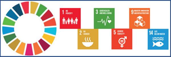 SDG-HLPF