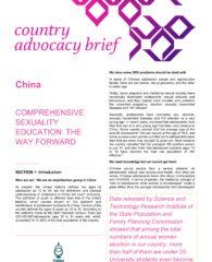 China CSE brief_001
