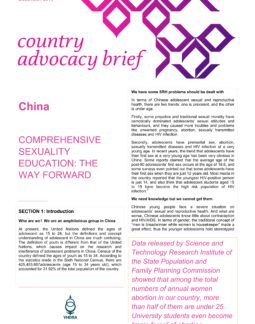 China CSE brief_001